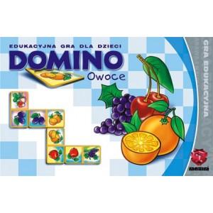 https://www.didaktikasowa.cz/403-566-thickbox/domino-ovoce.jpg