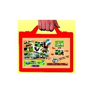 http://www.didaktikasowa.cz/494-738-thickbox/bingo-zvirata-a-priroda.jpg